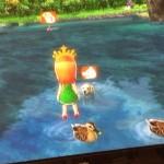 バンナムのWiiのゲーム「GO VACATION ゴーバケーション」の動物